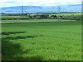 NY5427 : Fields near Clifton Dykes by Oliver Dixon