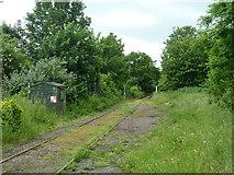 TR2648 : East Kent Railway by Robin Webster