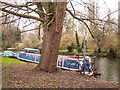 TL4659 : Houseboat on the Cam by Kim Fyson