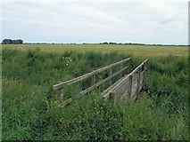 TF3999 : Little used footpath bridge near Sea Farm by Steve  Fareham
