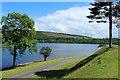 NX1161 : Castle Kennedy Gardens, The Black Loch by Billy McCrorie