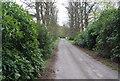 TQ4243 : Tandridge Border Path by N Chadwick