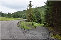 NM9716 : Forest access from the West Loch Awe Timber Haul Route by Patrick Mackie