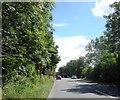 SJ9225 : Sandon Road by Anthony Parkes