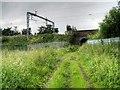 SJ6796 : Railway over Glazebrook Trail by David Dixon