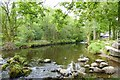 NY3403 : River Brathay by DS Pugh