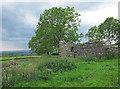 SD7072 : Ruin near to Slatenber by Trevor Littlewood