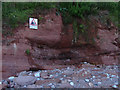 SX9371 : Cliff warning sign by Alan Hunt