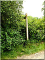 TL8346 : Footpath sign off Pentlow Road by Adrian Cable