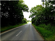 TL8146 : A1092 Melford Road, Cavendish by Adrian Cable