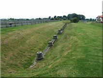 SJ5608 : Ruins of roman columns at Viroconium, Wroxeter by Chris Whippet