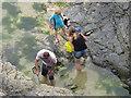 SW8775 : Exploring rock pools at Harlyn Bay by David Hawgood