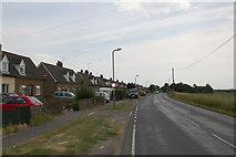 TL8605 : Houses on Mundon Road by Trevor Harris