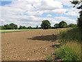 TM2390 : Fields on Shelton Common by Evelyn Simak