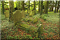 SU6044 : St.Mary's churchyard by Richard Croft