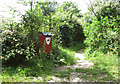 TM4077 : Dog litter bin at footpath junction by Evelyn Simak