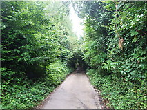 TR1859 : Well Lane, Fordwich by Chris Whippet