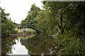 NS8594 : River Devon near Cambus by Doug Lee