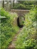 TQ0950 : Archway, Briary Hill, Dick Focks Common by Stefan Czapski