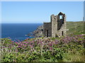 SW3632 : Engine house at West Wheal Owles by Rod Allday