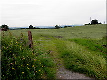 H4174 : An open field, Gillygooly by Kenneth  Allen