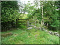 SE0024 : Stile and gate on Hebden Royd FP89 by Humphrey Bolton
