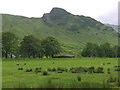 NY2906 : Field south of the New Dungeon Ghyll Hotel by Nigel Brown
