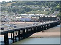 SX9372 : Riding the Salty west of Teignmouth and Shaldon Bridge by Robin Stott