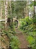 TQ0950 : Bridleway with arch, Briary Hill, Dick Focks Common by Stefan Czapski