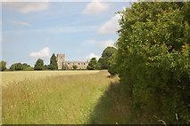 TL4538 : On the path to Holy Trinity, Chrishall by Trevor Harris