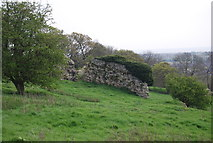 TR1134 : Lemanis Roman Fort by N Chadwick