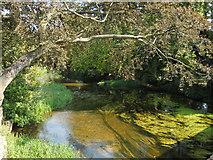 TF1309 : River Welland at Market Deeping by Paul Bryan