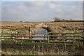 TL2285 : Great Fen Project, Darlows Farm by Hugh Venables