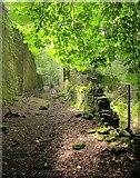 SE0726 : Greenroyd Lane by Derek Harper