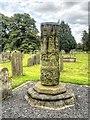 SE2280 : Saxon Cross, St Mary's Churchyard by David Dixon