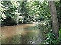 NT3369 : The River South Esk by M J Richardson