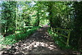 TQ1336 : Sussex Border Path by N Chadwick