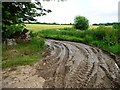 SU6027 : Extremely muddy track, south of Hinton Ampner by Christine Johnstone