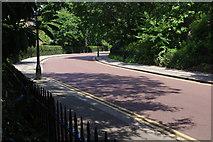 TQ2882 : York Bridge, Regent's Park by Stephen McKay