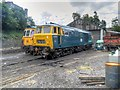 SD8010 : Diesel Shed at Bury Transport Museum by David Dixon