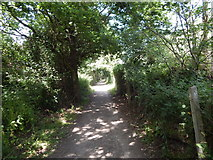 TM0321 : Path to Wivenhoe railway station by Hamish Griffin