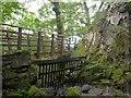 NY2721 : Footbridge over Cat Gill, Borrowdale by Julian Osley