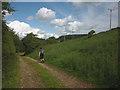 NY5520 : Bridleway near Thrimby by Karl and Ali