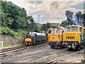 SD8010 : East Lancashire Railway Summer Diesel Gala 2014 by David Dixon