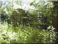TM0783 : RAF Fersfield - Site 11 by Evelyn Simak