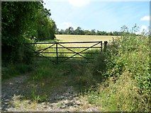 SU6230 : Field gate, west side, Old Park Road by Christine Johnstone