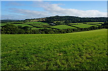 SX5756 : View from Sparkwell Footpath No4 by jeff collins