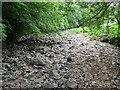SK0955 : Dry River Bed by Nigel Mykura
