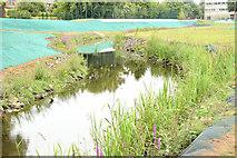 J3773 : The Knock River, Orangefield Park, Belfast - July 2014(2) by Albert Bridge