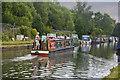 SJ7993 : Hazel on the Bridgewater Canal by Ian Greig